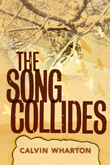cover for Song Collides