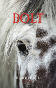 cover for Bolt