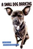 A Small Dog Barking by Robert Strandquist